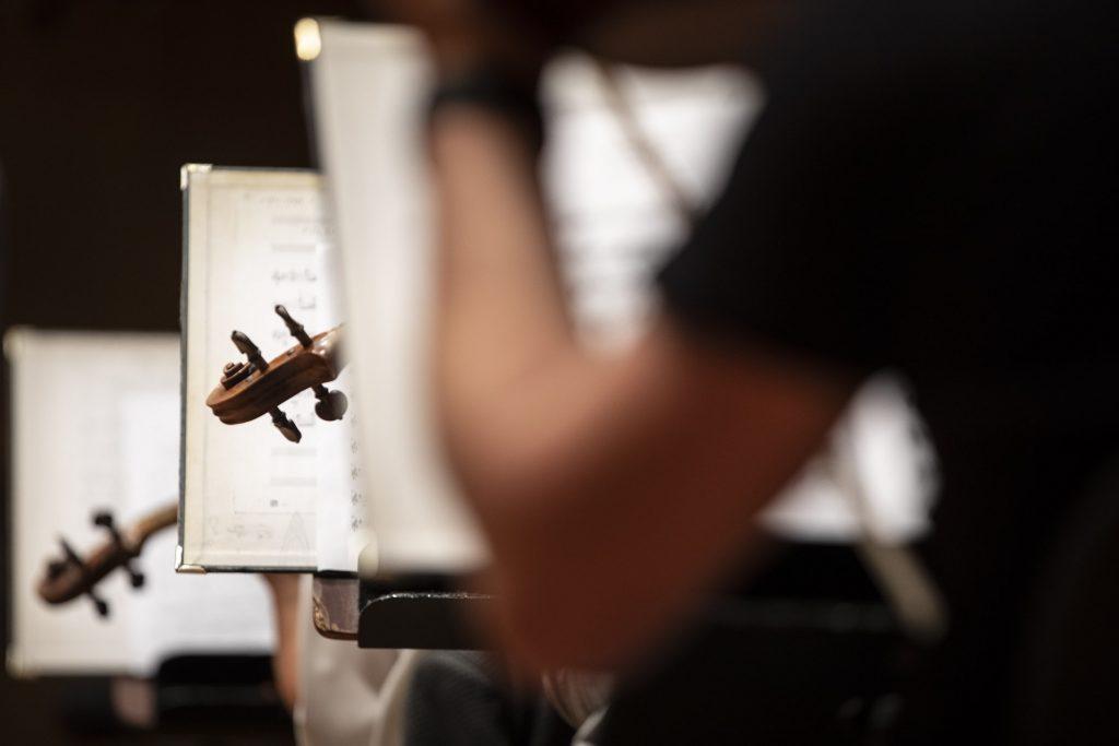 Pulpity z nutami stojące w rzędzie. Pomiędzy nimi widoczne główki skrzypiec.