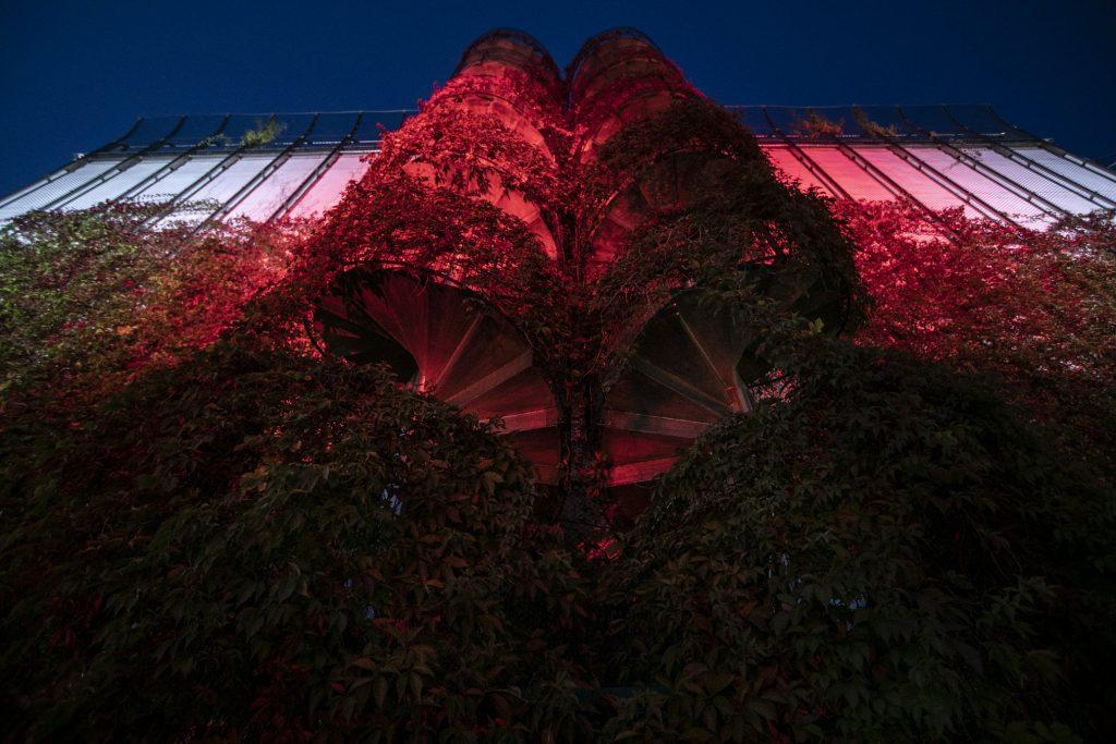 Budynek Opery i Filharmonii Podlaskiej, wejście na taras, podświetlony na czerwono.